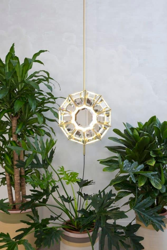 Pietro Russo Daffodil light
