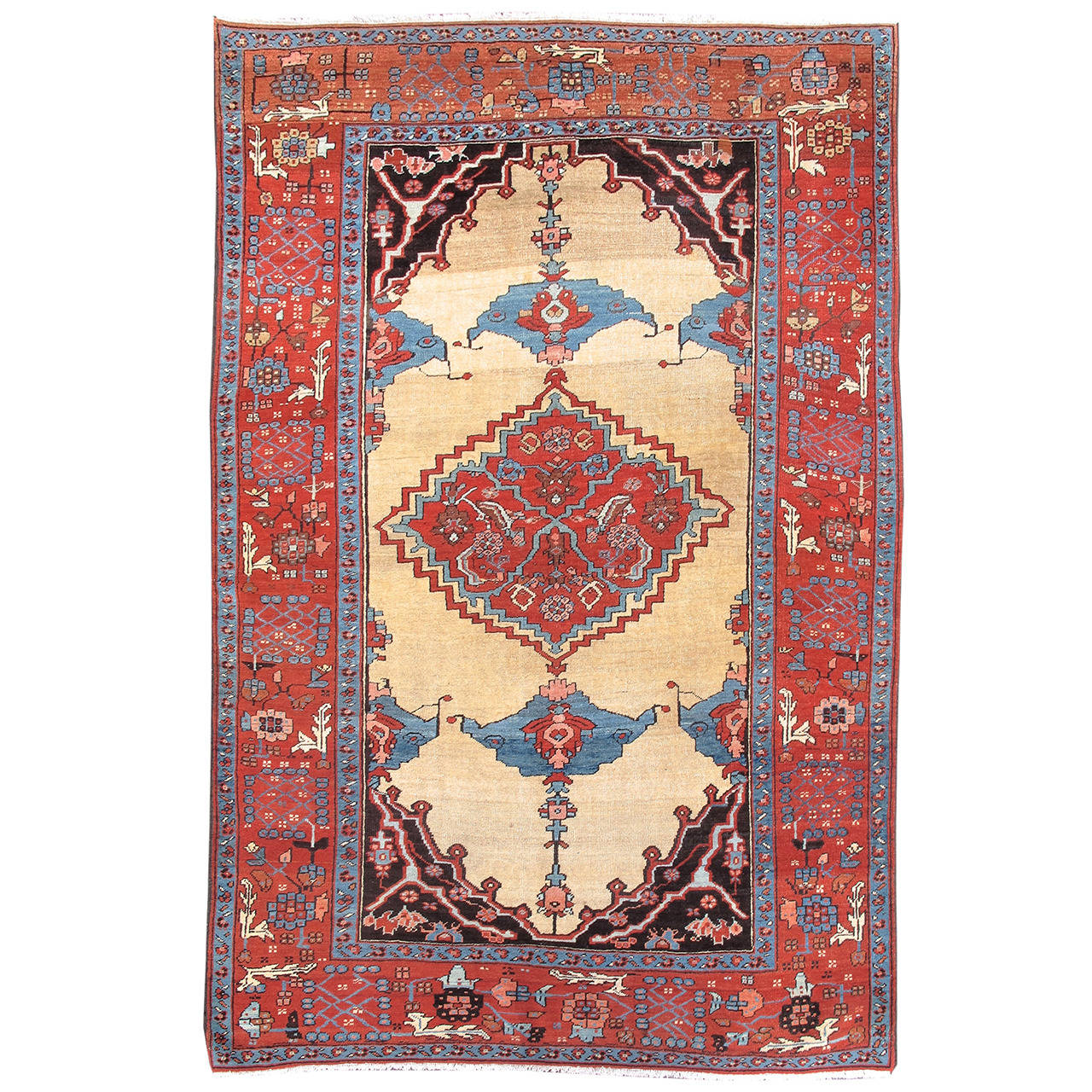 Rug Report 4 Market Trends From An Expert