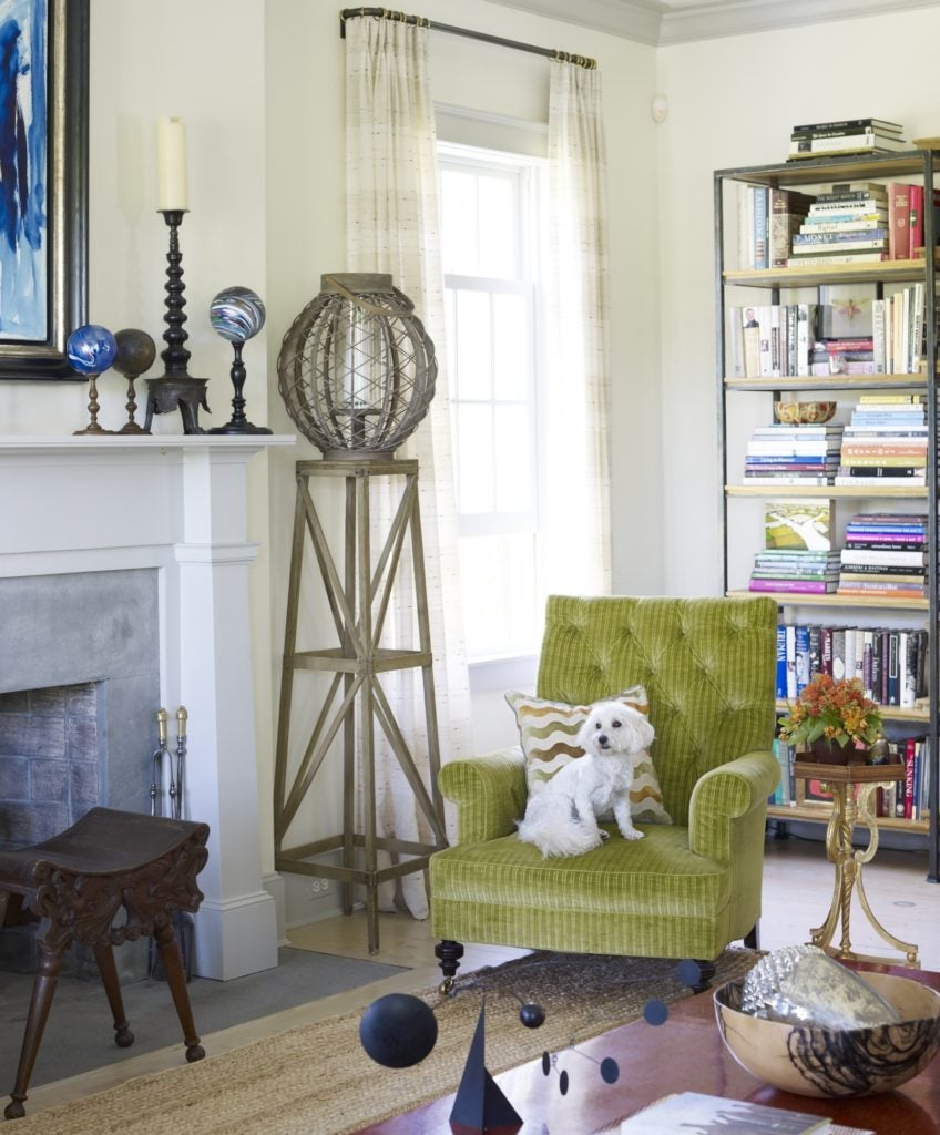 17 Dog-Friendly Interior Design Ideas   The Study