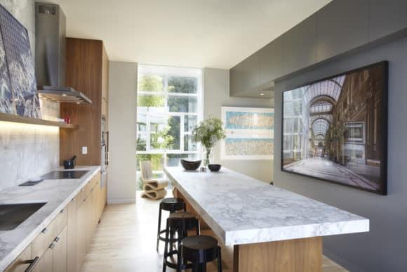 NICOLEHOLLIS_TelegraphHill_Kitchen2_MarkAdams