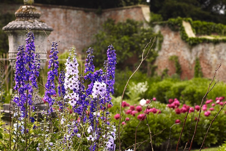 Gain Entrée to the Most Majestic Private Gardens in England