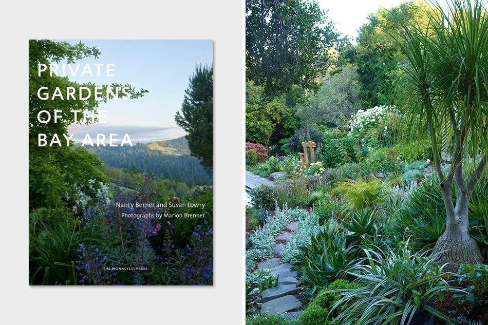 Bay Area garden