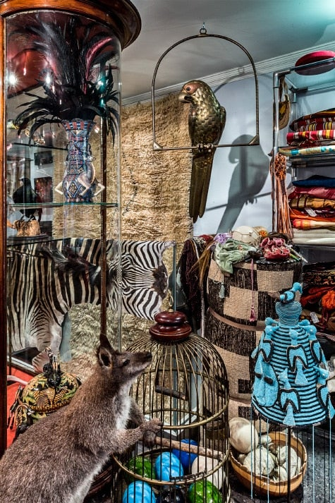 taxidermy and textiles at Creel and Gow