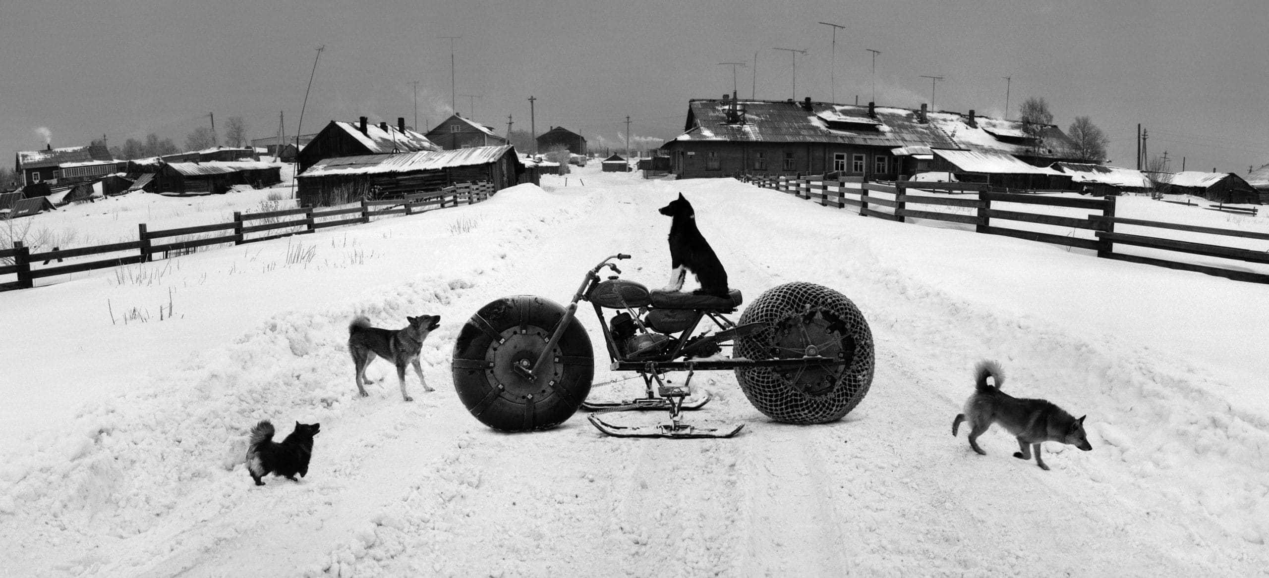 Solovki, White Sea, Russia (Dog on Motorbike), 1992