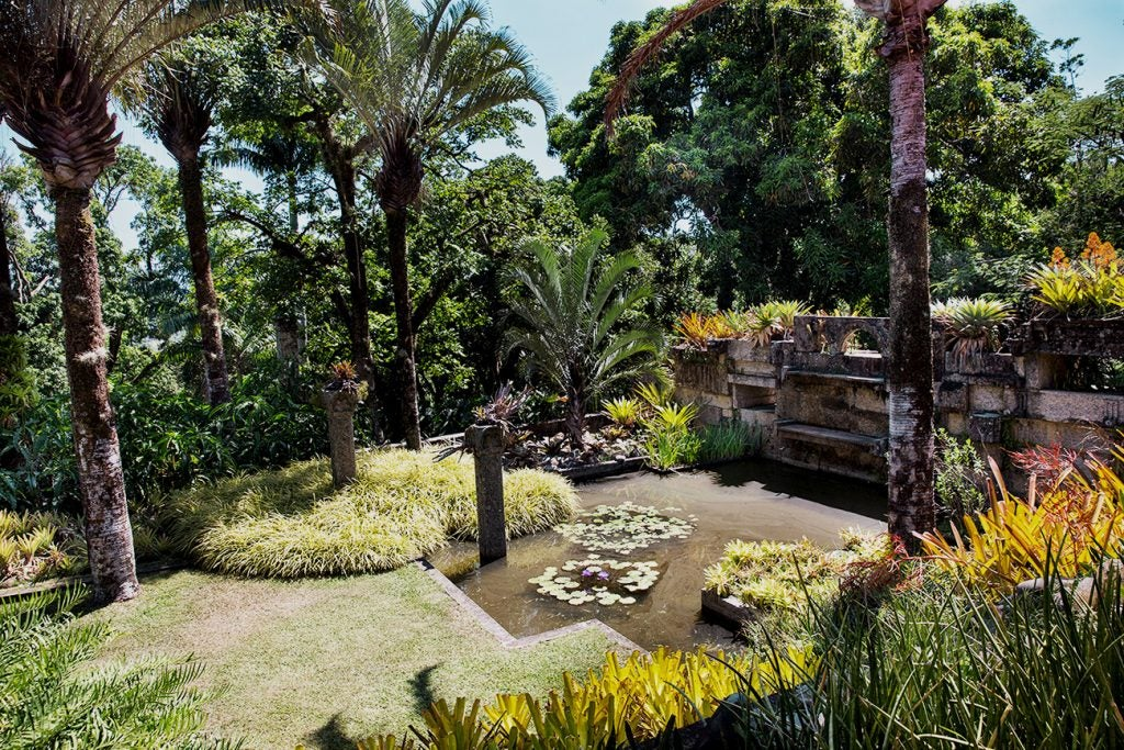 Garden at Burle Marx's Estate in Rio de Janeiro