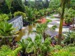 Roberto Burle Marx's Bold Brazilian Landscape Design Comes to New York
