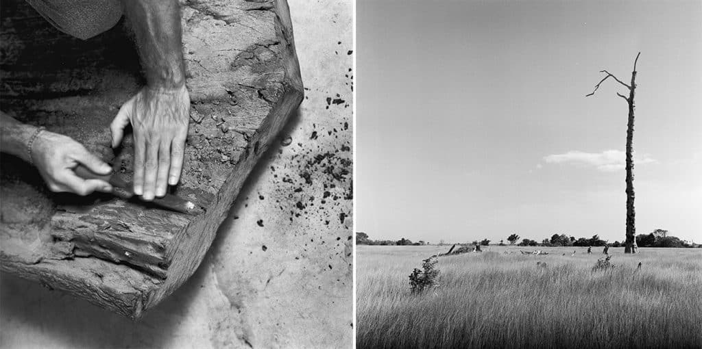 At left, artist Hugo França works a piece of wood. At right, a lone, barren tree in a field in Trancoso, Brazil.